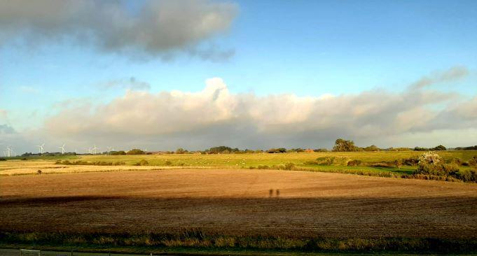 Urlaub im Ferienhaus an der Nordsee: Blick vom Deich auf die Salzwiesen